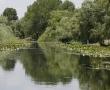 Imagini Delta Dunarii 45
