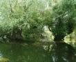 Imagini Delta Dunarii 51