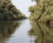 Imagini Delta Dunarii 47